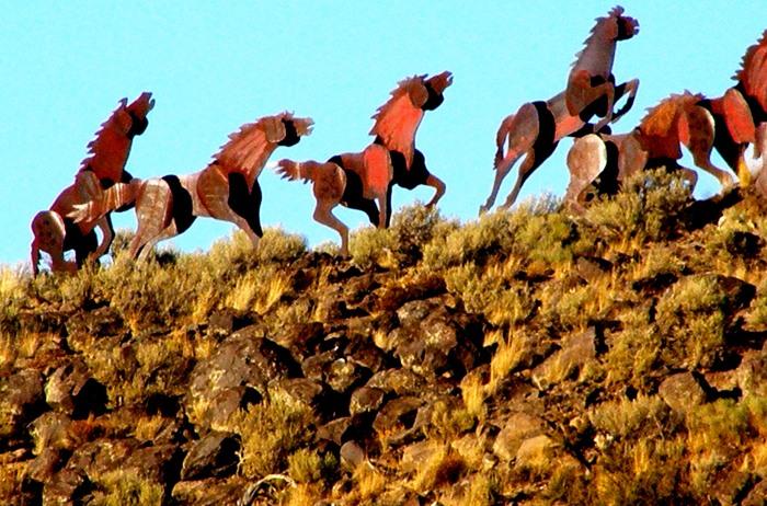 Horse sculptures along our route to Seattle, Washington.
