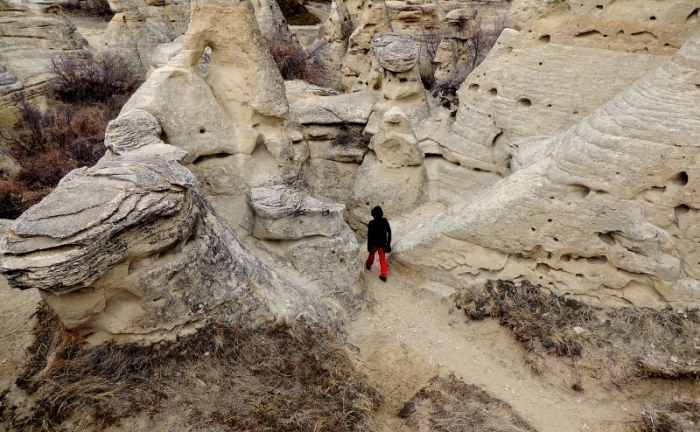 Walking amongst the Hoodoo's