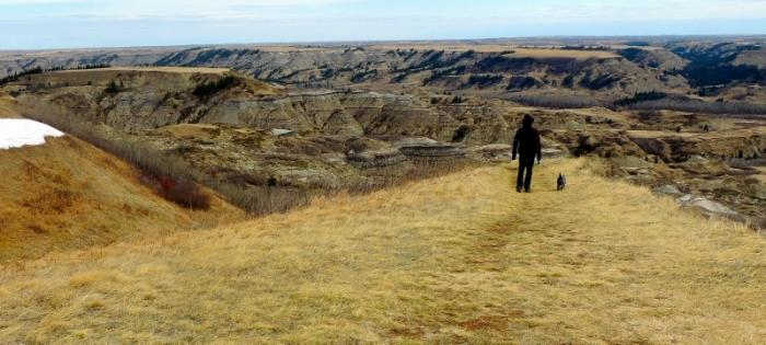 Dry Island Buffalo Jump Provincial Park