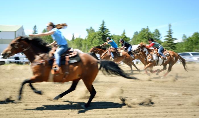 Millarville Horse Rasing